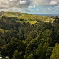 Australian Adventure - Victoria : Apollo Bay