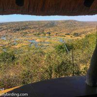 Kruger in Winter - Lazy Birding